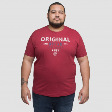 Tee shirt col rond MN03 grande taille brique