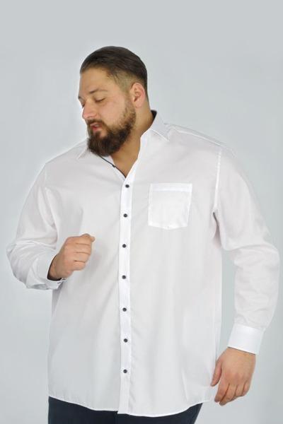 La chemise, une pièce intemporelle - SF